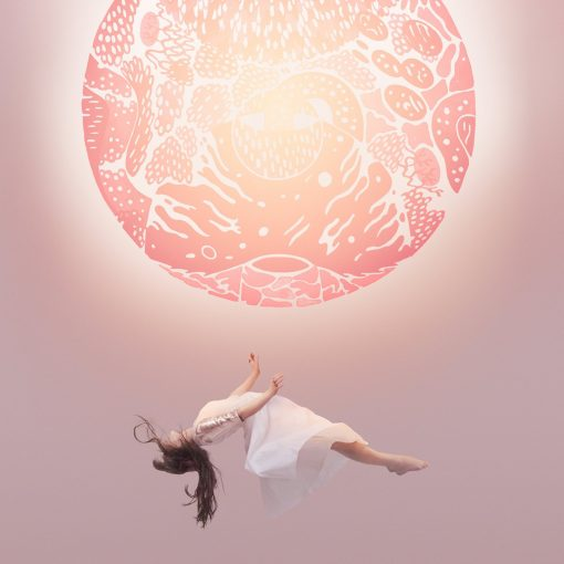 Disco de Vinil Purity Ring ‎Another Eternity