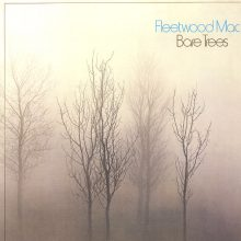 Disco de Vinil Fleetwood Mac Bare Trees