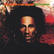 Disco de Vinil Bob Marley Natty Dread