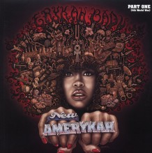 Disco de Vinil Erykah Badu - New Amerykah Part One