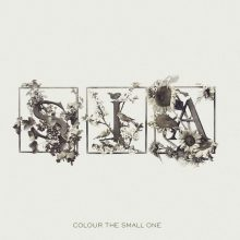 Disco de Vinil Sia ‎– Colour The Small One