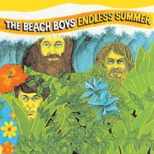 Disco de Vinil The Beach Boys - Endless Summer